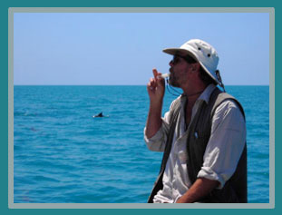Steve Allerton playing a dolphin whistle to the dolphin swimming by